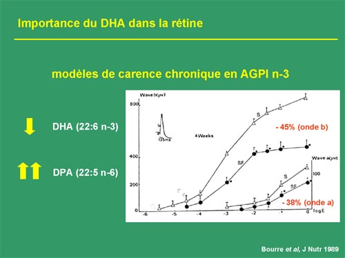 importance dha